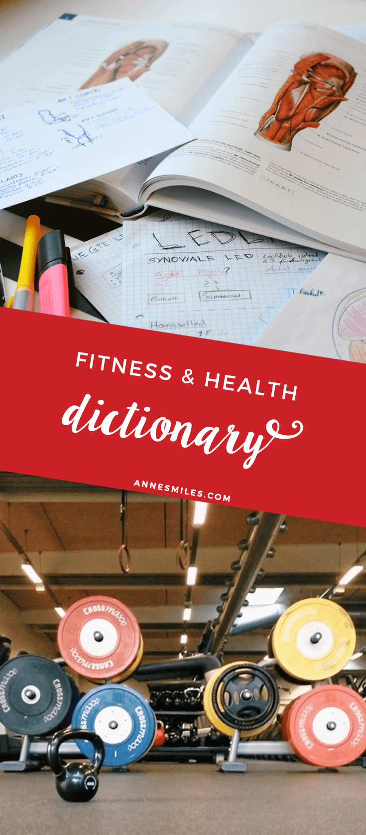 Fitness and health dictionary - Glossary explaining all the weird words and acronyms from the fitness world. Click through to read more, or repin to save for later!