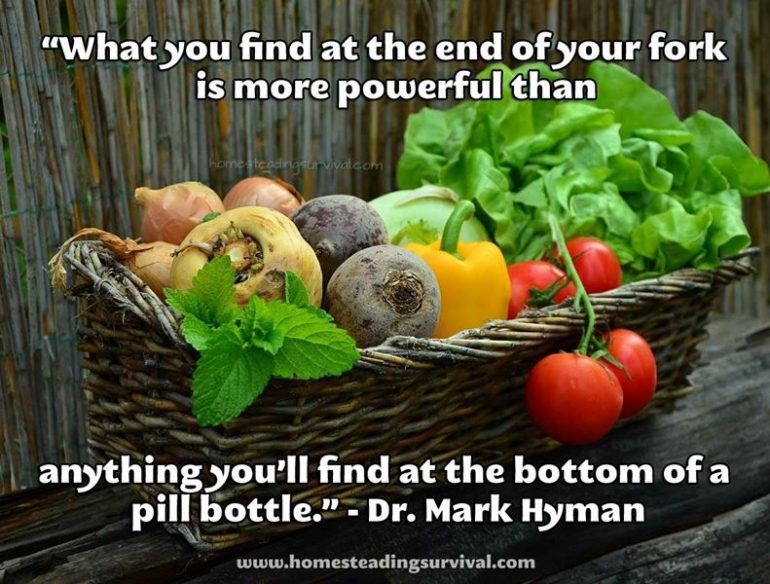 What-You-Choose-To-Eat-Is-One-Of-The-Most-Powerful-Medicines-of-All