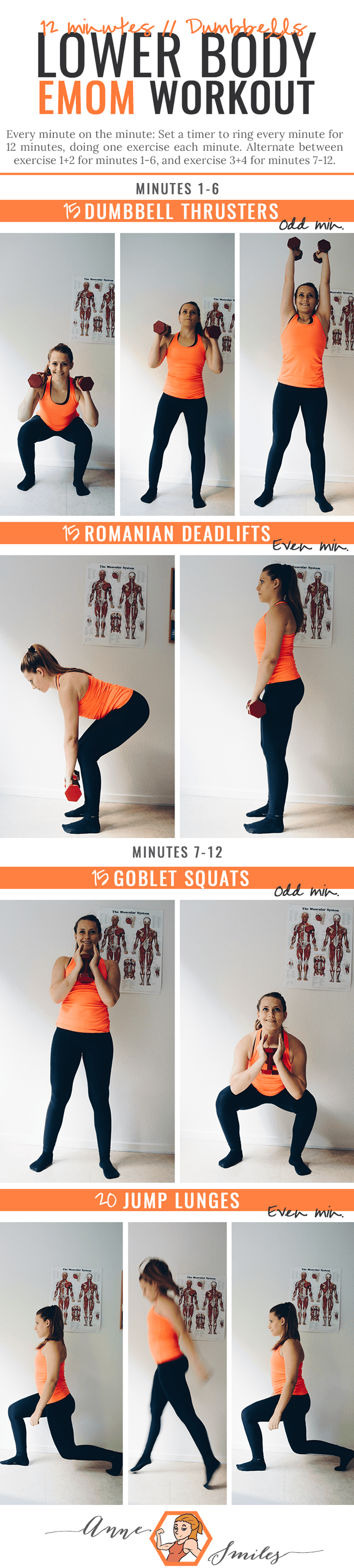 12 minutes lower body emom workout using dumbbells.