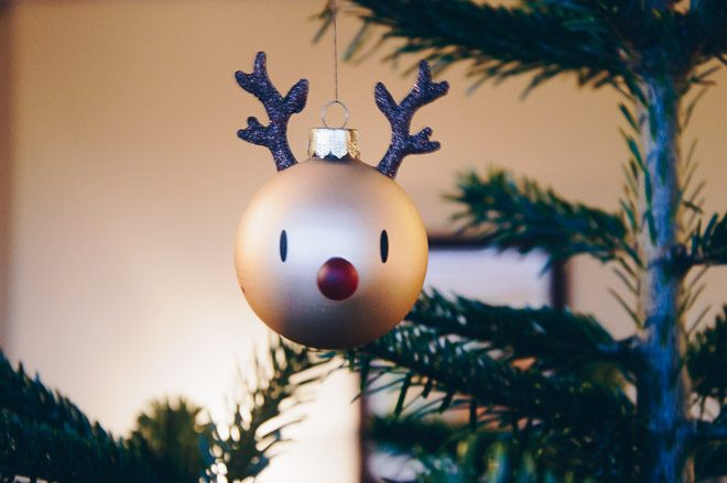 Rudolph hanging from the Christmas tree.