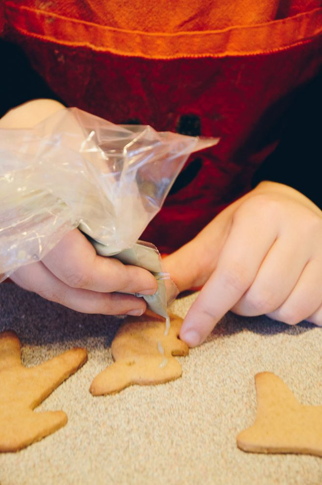 Christmas cookie decoration